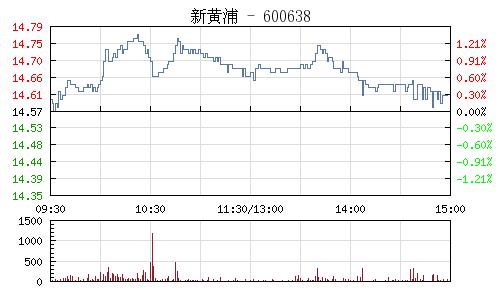 新黄浦(600638)行情走势图