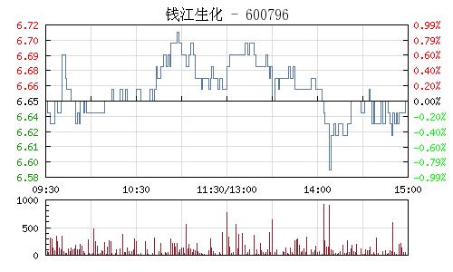钱江生化(600796)行情走势图