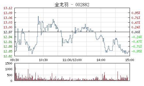 金龙羽(002882)行情走势图